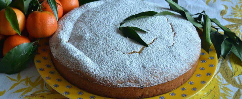 Torta soffice con mandarini: con il bimby