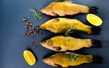 Tinca Gobba, l'unico pesce DOP in Europa