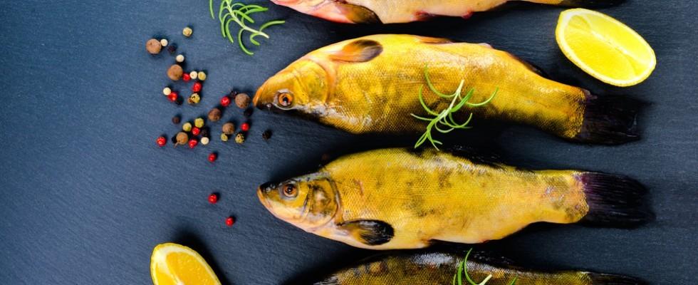La Tinca Gobba Dorata: dal carpione alle proposte gourmet