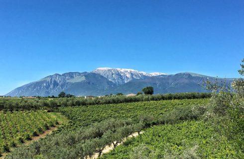 L'Abruzzo non è un paese per vecchi: ecco perché