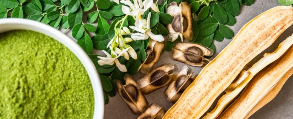 Moringa: cos'è e come utilizzarla in cucina