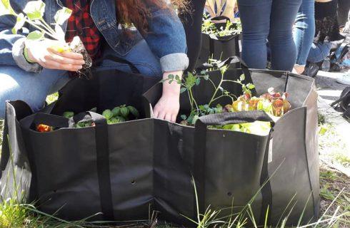 A Roma per Osteria! Social Food: i laboratori per grandi e piccoli