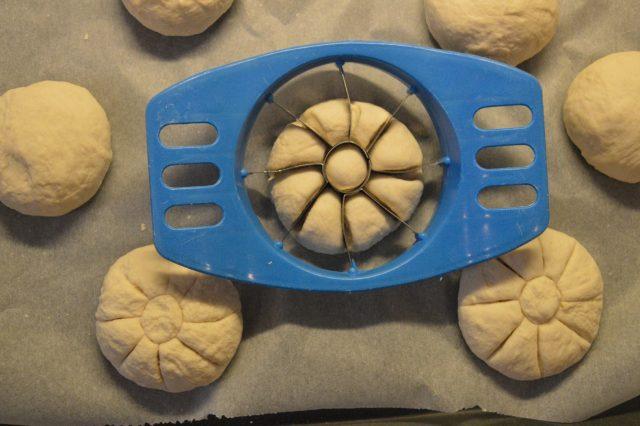 panini-tipo-rosette-a1531-5