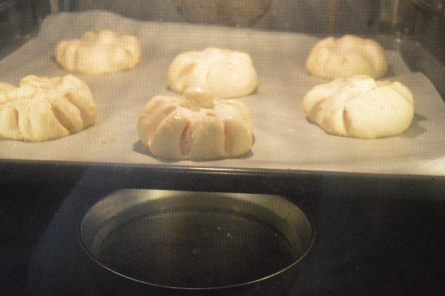 panini-tipo-rosette-a1531-6