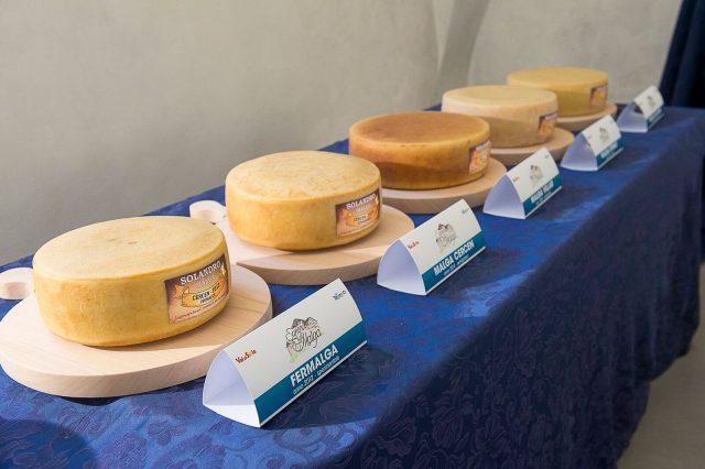 cheese-festival-di-sole-1