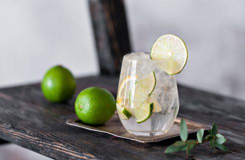 Amanti del gin cercasi: un'offerta di lavoro potrebbe farvi girare il Mondo