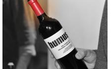Vino naturale: le fiere da non perdere
