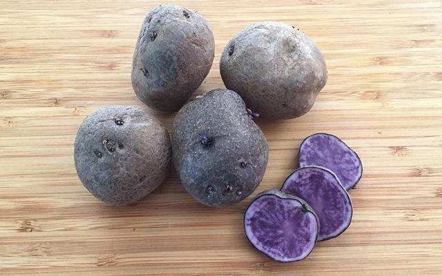 vellutata-di-patate-viola-1
