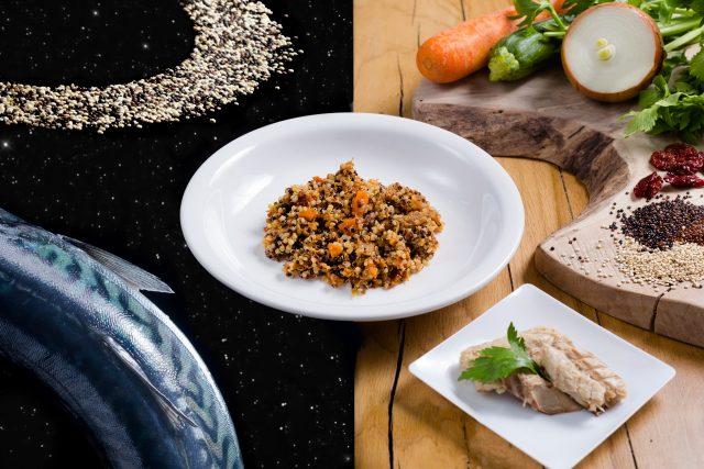 insalata-di-quinoa-con-sgombro-e-verdure-min