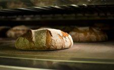 Come si riconosce il pane buono?