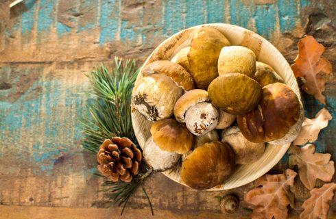 8 ricette per un pranzo a base di funghi porcini