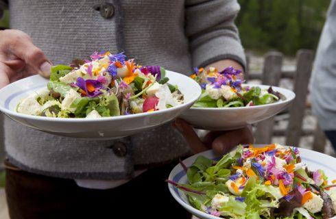 Taste the Mountain: raccontare la cucina di montagna