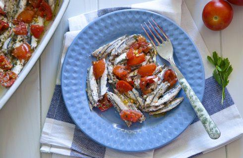Alici al pomodoro: pizzaiola di mare