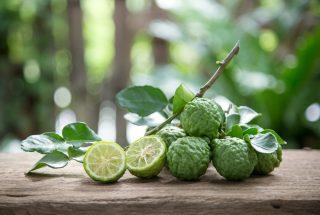 Perché si coltiva sempre più kaffir lime