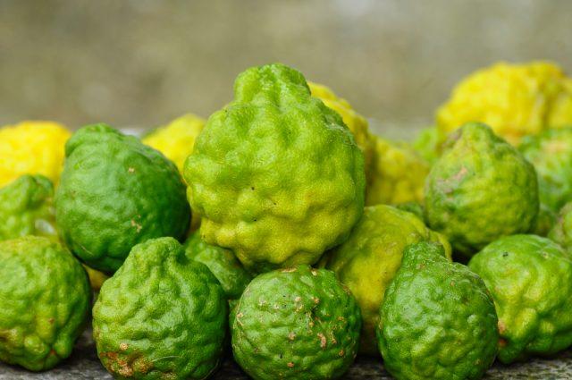 kaffir-lime-frutto-2