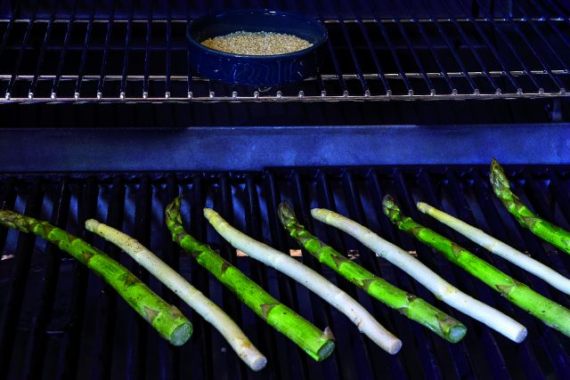 spaghetti-con-asparagi-e-bacon-grigliati-a1875-5