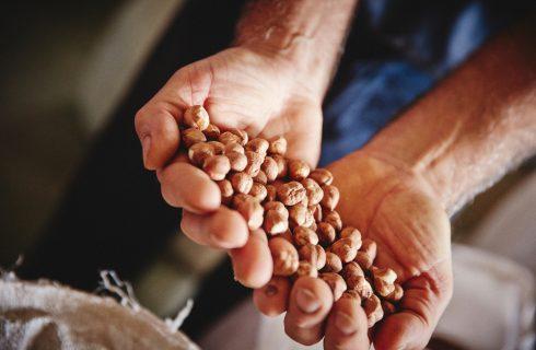 20 chef per celebrare la Festa della Nocciola nelle Langhe