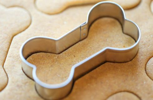 Bravocookies: pasticceria a 4 zampe