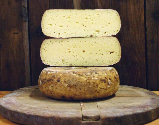 formaggio-semi-di-finocchio