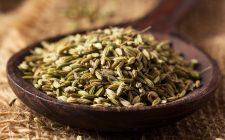 10 usi per i semi di finocchio in cucina