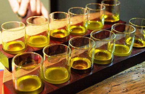 Oliveti Aperti Experience: cosa abbiamo imparato alla prima edizione dedicata alla cultura dell'olio ligure