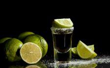 Il tequila, un liquore incompreso