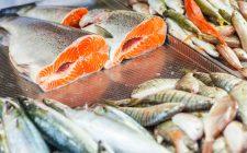 Salvaguardare i prodotti ittici: ecco come