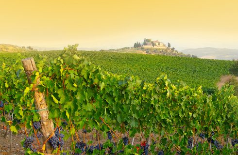 Turismo enogastronomico: la più amata è la Toscana