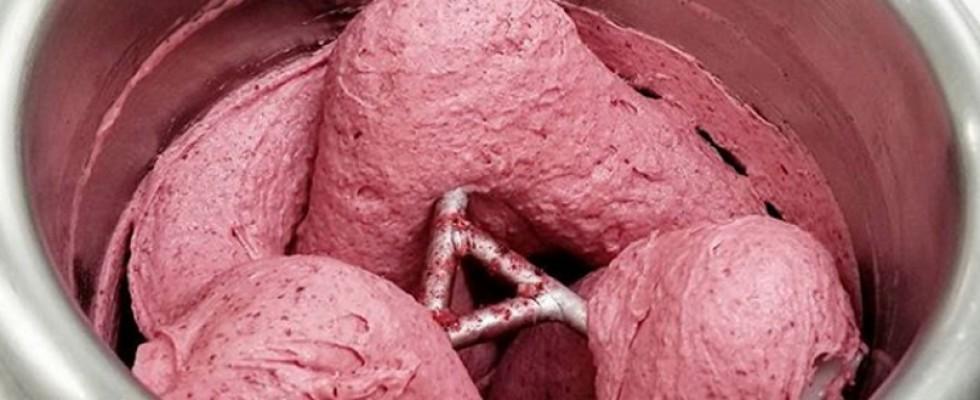 E voi lo mangereste il gelato alla lumaca?
