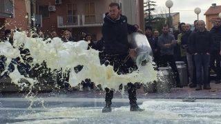 Perché i pastori sardi buttano il latte