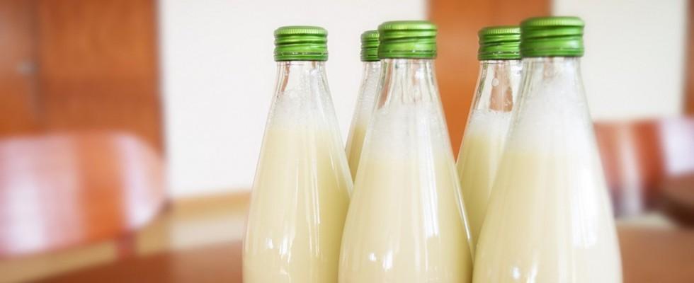 Latte di piselli: l'ultima alternativa vegetale al latte di mucca