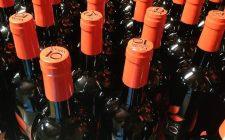 8 vini naturali da provare in primavera