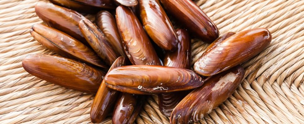 Vietato: 5 cibi che NON potete mangiare