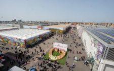 Verona: celebrare la primavera con Vinitaly