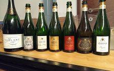 Champagne Tarlant: parola alle vigne