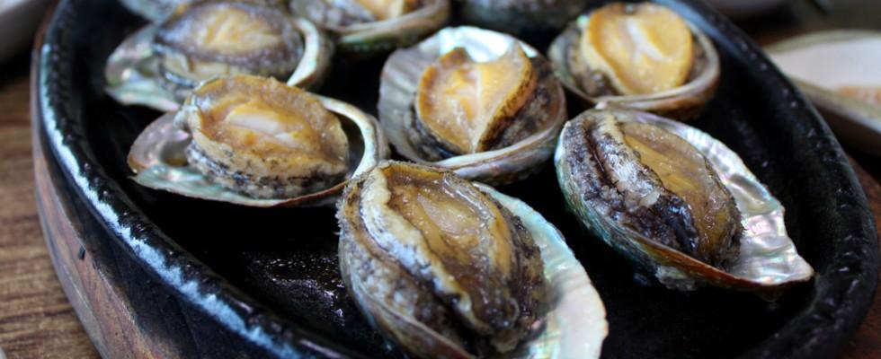 Abalone: perché tutti lo vogliono e perché è così pregiato