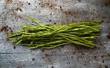 Piccola guida degli asparagi selvatici