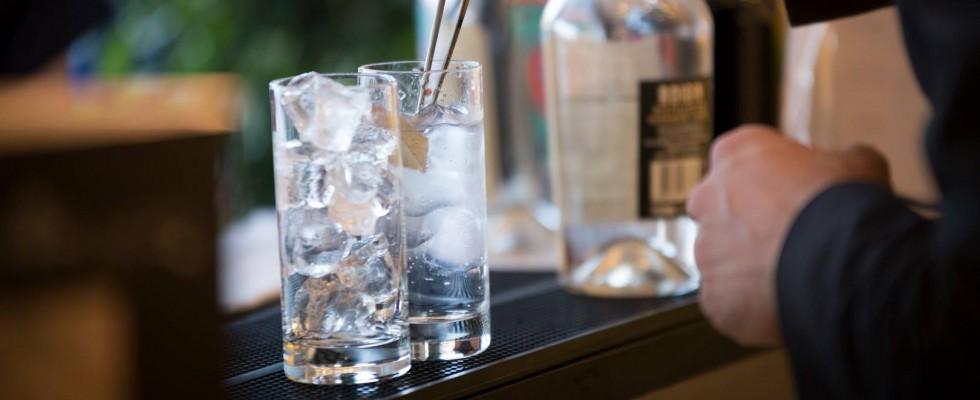 Piccola guida al Gin featuring Elio Carta
