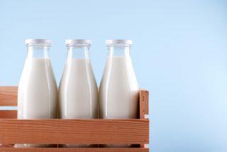 Non solo vaccino: tutti i tipi di latte animale commestibili