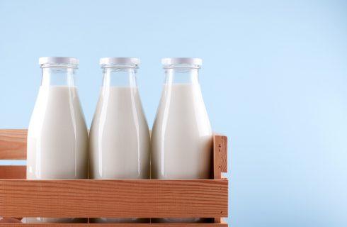 Tutti i tipi di latte animale commestibili
