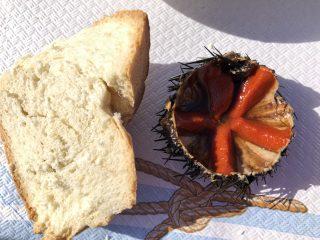 Le pescherie per mangiare crudo di mare tra Bari e Savelletri
