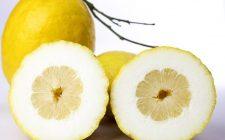 Insalata di limoni procidana, la ricetta sfiziosa