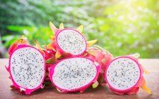 Dragon fruit: le mille facce della Pitaya