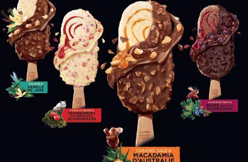 Nuii gelato: gusti, opinioni e dove comprarlo