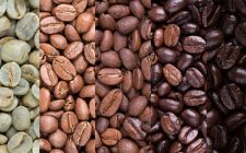 Scoprire il caffè: le tipologie di tostatura