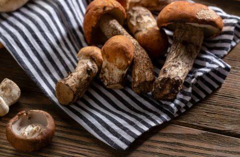 Funghi porcini: le ricette dei contorni da provare
