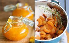 La ricetta della marmellata di prugne gialle