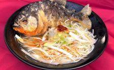 In Giappone arriva il ramen di piraña
