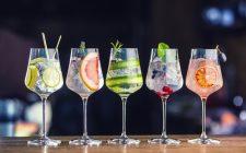 5 Gin Tonic perfetti da fare a casa