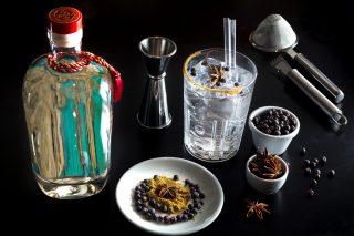 Tutti i modi per sfruttare una buona bottiglia di gin